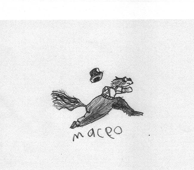 MaceoCapturesBlossom