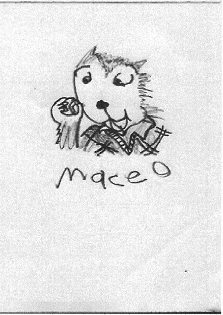MaceoMarble
